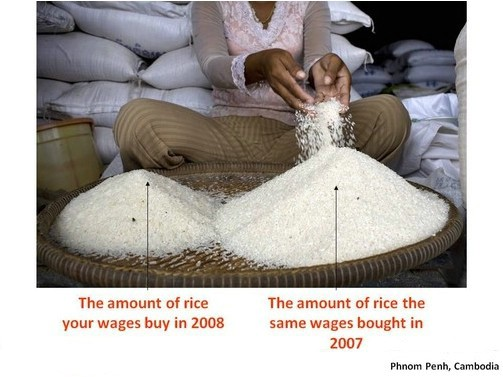 Affordability of rice in Cambodia in 2008 compared to 2007