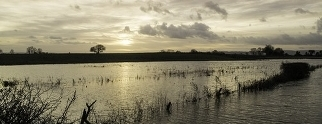 Flooding in Somerset (KS2)