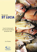 Focus on St Lucia