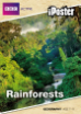 Rainforest iPoster