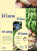 St Lucia photo pack offer